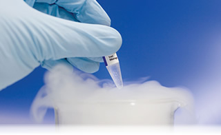Pharmaceutical Industry - Chemical Vapors